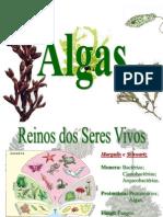 ALGAS E BRIÓFITAS - AULA  5