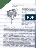 Tecnicas Del Automovil Chasis_Parte2