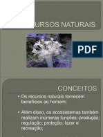 RECURSOS NATURAIS - POWER POINT