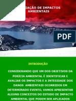 AVALIAÇÃO DE IMPACTOS AMBIENTAIS - MODULO III PA