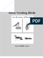 Iowa Birds