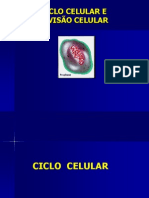 CICLOCELULARMITOSEEMEIOSE