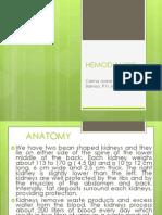 HEMODIALYSIS-ana
