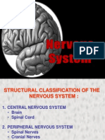 50703604 Anatomy Physiology Nervous System