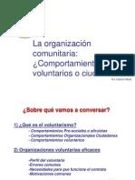Organizaciones Voluntarias_fundamentos Conceptuales