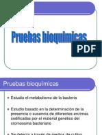 bioquimicas1