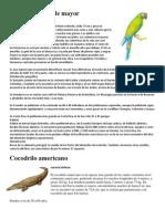 6 Animales en Peligro de Extincion en Honduras