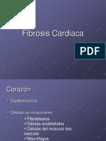 Fibrosis Cardiaca