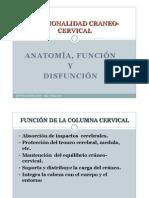 Funcionalidad Craneo-cervical 2011