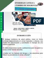Monografia Dengue