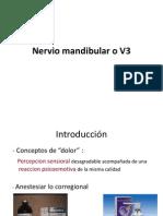 Nervio Mandibular o V3