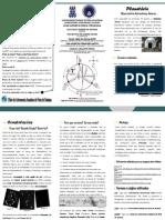 Folheto Antares (Web)
