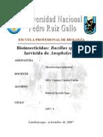Produccion de Bioinsecticidas a Base de Bacillus sp.