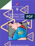 Manual Especial Ida Des