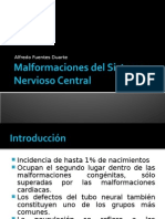 Malformaciones Del Sistema Nervioso Central