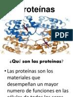 Expo Proteinas 2.1
