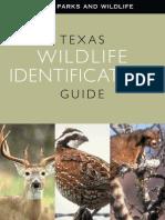 Texas Wildlife Identification Guide