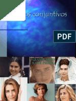 Tecidos_conjuntivos