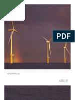 Arup Renewable Energy Brochure