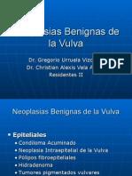 Neoplasias Benignas de La Vulva2 1234317299384269 1