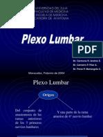 Plexo LSacro6