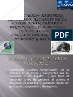 CALIFICACIONES REGISTRALES