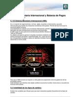 Lectura 5 - Sistema Monetario Internacional y Balanza de Pagos