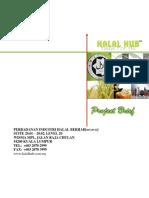 Pihb Project Brief.summary