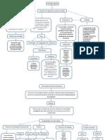 Mapa Conceptual Psicologia Cognitiva