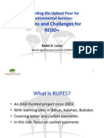 Rewarding the Upland Poor for Environmental Services_Lessons and Challenges for REDD