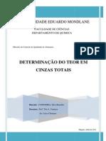 DETERMINAÇÃO DE CINZAS - Silva Condoeira