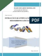 EXTRACÇÃO E QUANTIFICAÇÃO DE ÁCIDO DESOXIRIBONUCLÉICO _DNA_CONDOEIRA,Silva