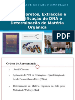 ACETIL CLORETOS, DNA e MATÉRIA ORGANICA - APRESENTAÇÃO (10.05.2011) - CONDOEIRA,Silva