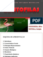 Xantofilas - CONDOEIRA,Silva