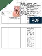 Study of Illness Condition