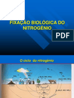 Slides Fixao Biolgica Do Nitrognio[1]