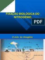 Slides Fixao Biolgica Do Nitrognio[1]