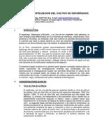 Nutricion y Fertilizacion Del Esparrago 2005