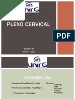 Plexo Cervical- 20011