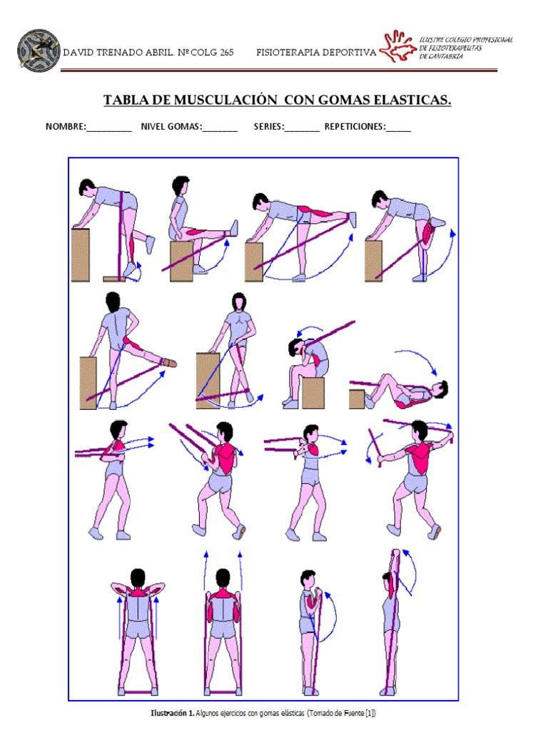 ejercicios de musculacion con gomas elasticas