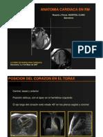 Anatomía Cárdica