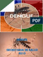 Charla Dengue