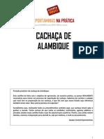 Cartilha Cachaca - Exportar