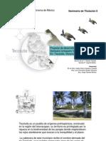 Proyecto Desarrollo Sustentable Santuario Tortuguero Vida Milenaria