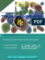 Teoria da endossimbiose