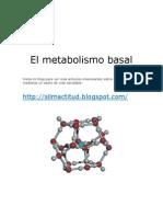 El Metabolismo Basal