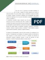 CONFERENCIA - ALCALOIDES, VITAMINAS E COMPOSTOS FENÓLICOS