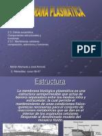 membranaplasmatica