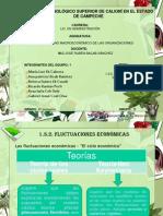 Expo de Economia 2.24,2.2.5,2.2.6