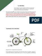 Anatomía de la bicicleta